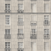 City_Windows