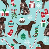 Rgsp_christmas_3_shop_thumb