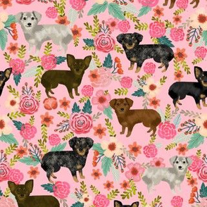 chiweenies floral fabric cute dogs dog print