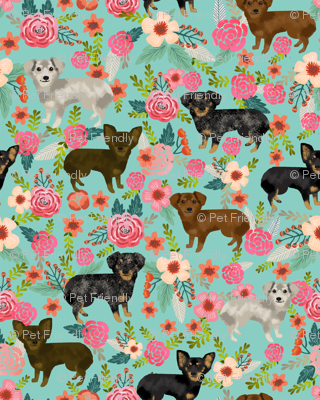 chiweenie  floral dog fabric cute dogs fabric dog design