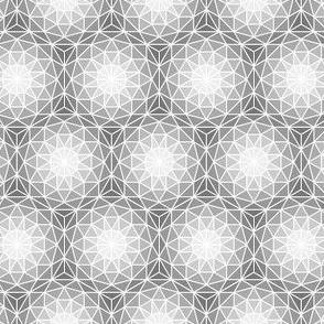 06176718 : SC3 V dome : grey