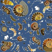 Rrrlimestone_ammonites_colour_extra_ammonites_rich_blue_shop_thumb