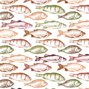 Fish in Reds