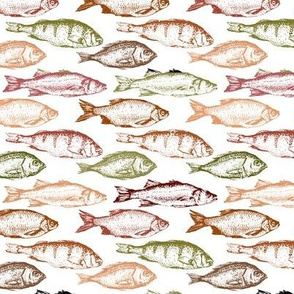 Fish Sketches in Red Shades // Small