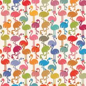 Rrflamingos-01_shop_thumb