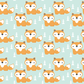 foxes on turquoise