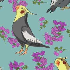 cockatiel flowers