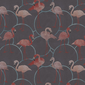 Walk with flamingos