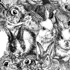 Black and White Rabbits, pencil art look