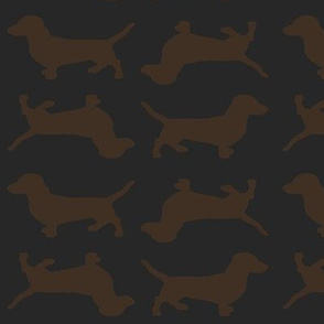 Brown Doxies on Slate Grey