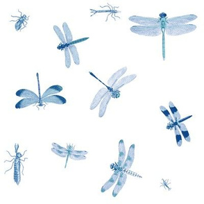 Dragonflies Blue Toile