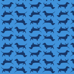 Blue Doxies on Blue