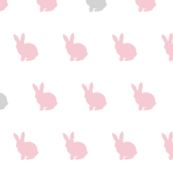 Bunny custom