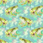 Green Tree Frog, Mottled Pastels