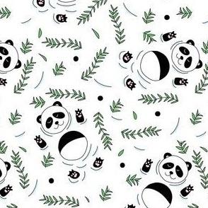 Swimming pandas