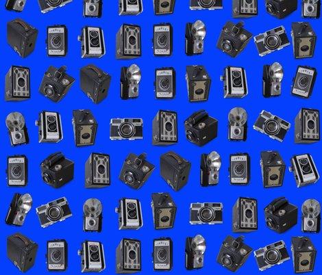 Rrrrrpunahou_cameras_blue150_shop_preview