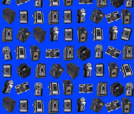 Punahou Blue Vintage Cameras fabric by honoluludesign on Spoonflower - custom fabric