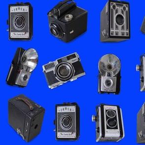 Punahou Blue Vintage Cameras