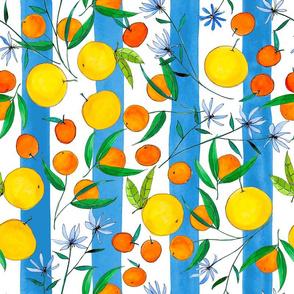 Citrus Stripes  (Blue)