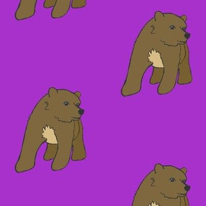 Brown Bear on Purple