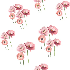 Seamless pattern with pink tender poppies