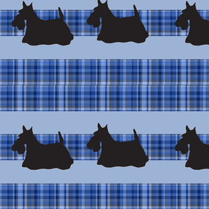 scotty_plaid_pattern