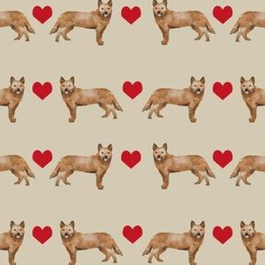 Australian Cattle Dog love hearts  sand
