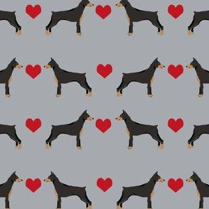 doberman_love_grey