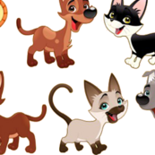 dogs-and-cats_png
