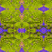 Mandala_romanescue_califlower__4_4500_shop_thumb