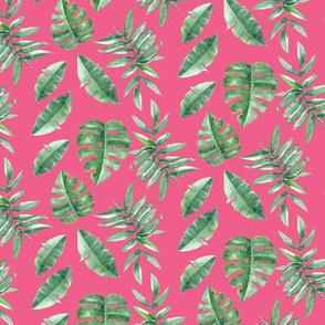 Tropical Leaves Palm Leaf Frawn Banana Water Color on Pink