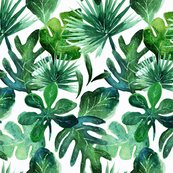 Rrtropical_leaves02_shop_thumb