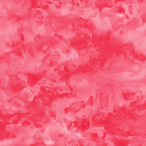 watercolor strawberries bold - solid watercolor coordinate