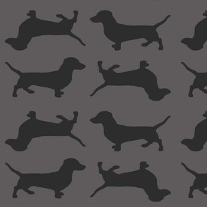 Slate Grey  Doxies on Grey
