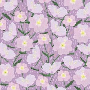 Primrose on Lilac