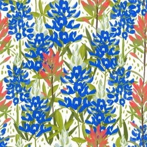 Bluebonnets and Paintbrushes on White