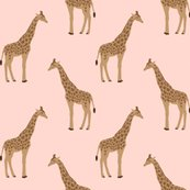 Rsafari_giraffe_3_shop_thumb