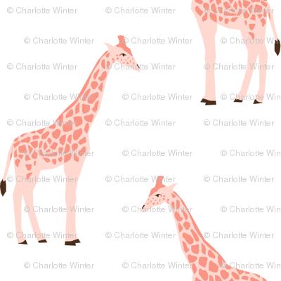 giraffe fabric safari animals nursery fabric baby nursery blush