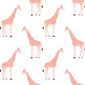 Rsafari_giraffe_6_shop_thumb