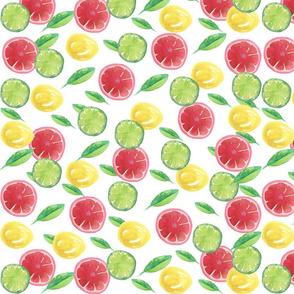 Watercolor Citrus_Splash