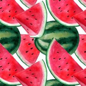 Watermelon. Watercolor Summer Fruit