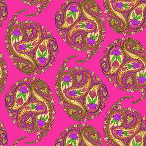 Springtime Floral Paisley on Hot Pink
