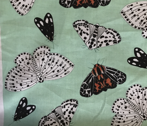 Moths with a Green Background