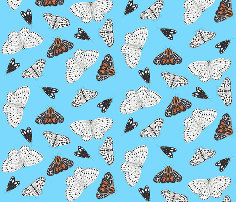 Moth Pattern with Blue Background fabric by suzzincolour on Spoonflower - custom fabric