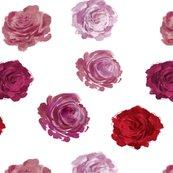 Roses_pattern_shop_thumb