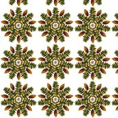 Walnut_and_persimmon_mandala_3_shop_thumb