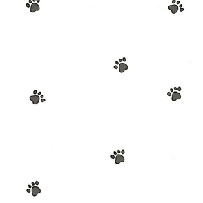 paw_print_by_roh