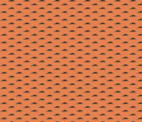 Ranteater_orange_shop_preview
