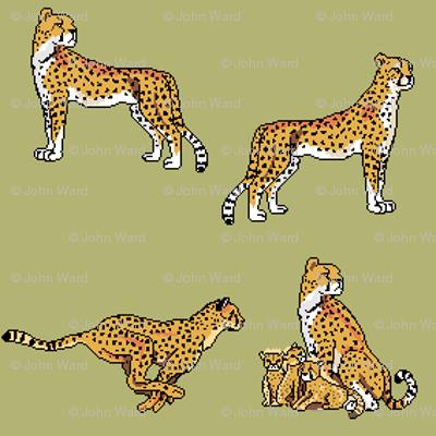 Cheetahs Green