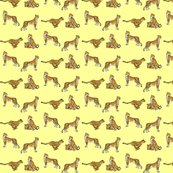 Rcheetah_set_yellow_shop_thumb